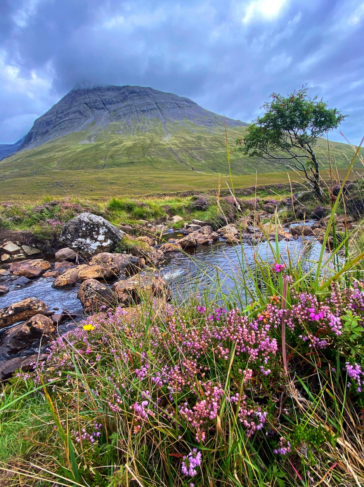 WOW Scotland