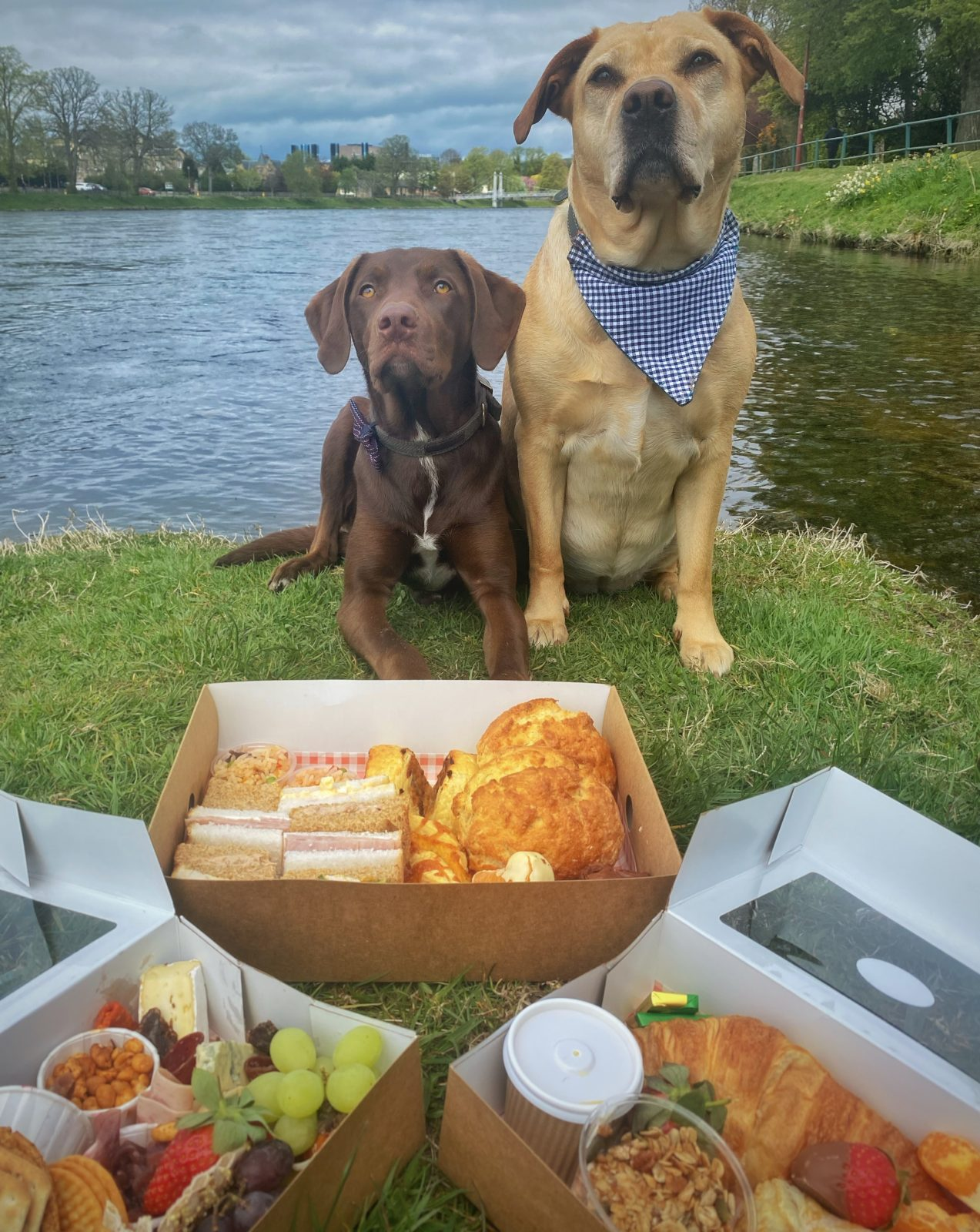 grazing platter by the River Ness with dogs